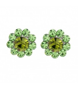 Oorbellen met groene strass steentjes