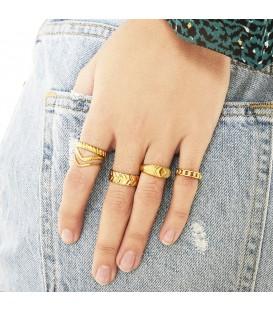 zilverkleurige brede ring met details (17)
